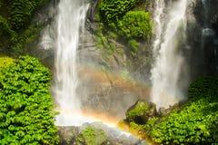 Den Sekumpul vattenfallet i Bali omgav vid den tropiska skogen Fotografering för Bildbyråer