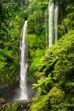 Den Sekumpul vattenfallet i Bali omgav vid den tropiska skogen Royaltyfria Bilder