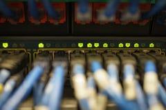 Den selektiva fokusen på indikatorljus på proppen för nätverksLAN-kabel lurar arkivfoton