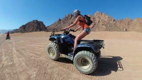 Den sexiga flickan rider en kvadratcykel i öknen av Egypten Dynamisk sikt i rörelse arkivfilmer
