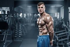 Den sexiga muskulösa mannen i idrottshallen, format buk- som visar tränga sig in Manlig naken torsoabs för kroppsbyggare som utar royaltyfri bild