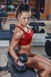 den sexiga unga friidrottflickan som gör bicepshantlar, krullar övningar på bänk i idrottshall arkivbild