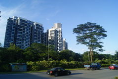 Den Shenzhen fjärden parkerar landskap, i Kina Arkivbild