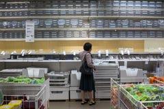 Den Shenzhen IKEA gallerian som p?b?rjar fr?n en nordisk lagerkedja, s?ljer levererar det f?rsamlat m?blemang och ocks? hush?llob royaltyfri fotografi