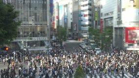 Den Shibuya korsningen, Tokyo, Japan antecknade på Maj 15, 2016 lager videofilmer