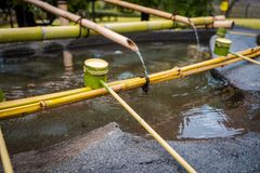 Den Shinto Omairien som rentvår ceremoni, genom att använda vatten i bambuskopa, skriver in för till templet i Japan fotografering för bildbyråer