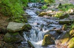 Den Shipot vattenfallet på en bergflod bland stenar och vaggar i de ukrainska Carpathiansna Royaltyfri Foto