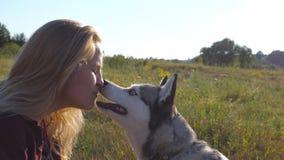 Den Siberian skrovliga slicka kvinnliga ägaren och flickan skruvade upp framsidan på fältet på solig dag Ung kvinna som spenderar lager videofilmer