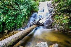 Den Siribhume vattenfallet, den Inthanon nationen parkerar, Chiang Mai, Thailand Royaltyfria Bilder