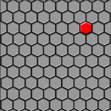 Den sista (första) cellsvarten Royaltyfri Bild