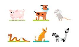 Den sjuka och sårade djuruppsättningen, veterinär- omsorg, svin, tjaller, katten, ormen, hunden, tvättbjörn med murbrukar och för royaltyfri illustrationer