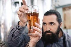 Den skäggiga mannen ser stordian av öl i exponeringsglas Bryggaren studerar täthet av öl i exponeringsglas royaltyfri bild