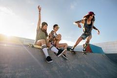 Den Skateboarding kvinnaridningskateboarden på skridskon parkerar rampen royaltyfria bilder