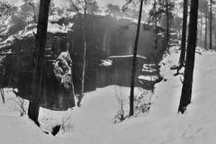 Den Skautska skalaen vaggar i snöig tallskog för vinter i Machuv krajregion i Tjeckien Royaltyfri Bild