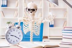 Den skelett- affärsmannen som arbetar i kontoret Royaltyfria Foton