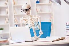 Den skelett- affärsmannen som arbetar i kontoret Arkivfoto