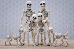 Den skelett- familjståenden Royaltyfri Bild