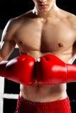 Den skickliga boxningmästaren förbereder sig för att slåss Arkivfoton