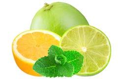 Den skivade citronen och limefrukter med mintkaramellen iisolated på vit bakgrund Royaltyfri Foto