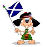 Den skotska tecknad film förföljer Royaltyfri Fotografi