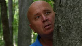 Den skrämde mannen är att dölja som är förskräckt efter ett träd i skogen stock video
