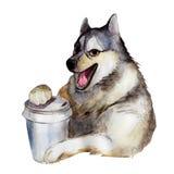 Den skrovliga hunden med koppen kaffe, vattenfärgillustration stock illustrationer