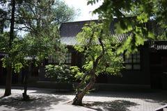 Den släkt- tempelborggården Fotografering för Bildbyråer