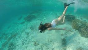 Den slanka flickan i vit swimwear är dyka och swimmming under vatten och se in i kamera och att ha gyckel från underbart stock video