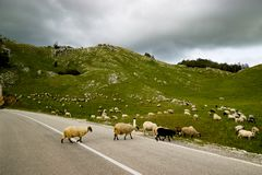 Den slingriga vägen i Montenegro Royaltyfri Bild