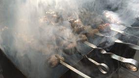 Den smakliga kebaben grillas på brand i röken lager videofilmer