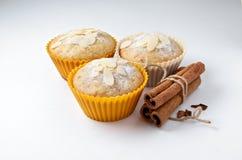 Den smakliga muffin bakar ihop med kanelbruna pinnar royaltyfri bild