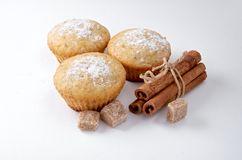 Den smakliga muffin bakar ihop med kanelbruna pinnar royaltyfri foto