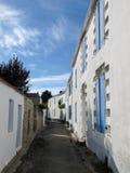 Den smala gatan fodrade med traditionella vit- och blåtthus Arkivbild