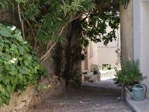 Den smala gränden i halv-skugga, sydliga Frankrike, lägger in och badar växter, typisk sandsten för hus, grova kullersten, royaltyfri fotografi