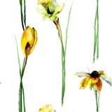 Den sömlösa modellen med krokus, gerber och pingstliljan blommar Arkivfoto