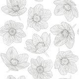 Den sömlösa modellöversikten blommar dryasen, svartlinje på vit bakgrund Royaltyfri Fotografi