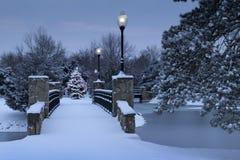 Den snö täckte julgranen glöder Magically i denna vinterplats Royaltyfri Bild