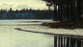 Den snöig aftonkusten med sörjer träd reflekterade i lugna sjövatten stock video