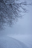 Den snöig banan i vintern parkerar Fotografering för Bildbyråer