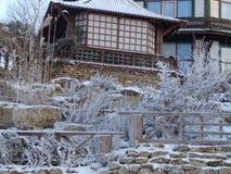 Den snöig gården arkivfoto