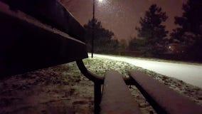 Den snöig natten i parkerar sikt från bänk stock video