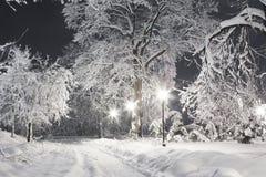 Den snöig natten parkerar Arkivbilder