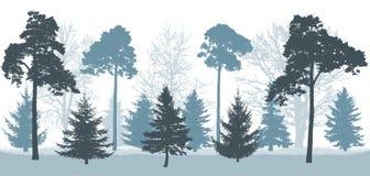 Den snöig skogen i vinter, kontur av träd sörjer, granar, eken, etc. också vektor för coreldrawillustration stock illustrationer