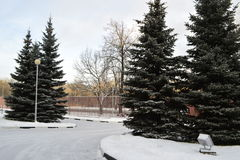 Den snöig vintern landskap Royaltyfri Fotografi