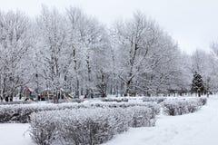 Den snöig vintern parkerar Arkivfoto