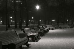 Den snöig vinternatten parkerar Fotografering för Bildbyråer