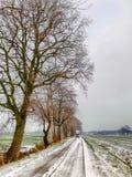 Den sn?ig vintern landskap fotografering för bildbyråer