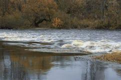 Den snabba floden flödar och det urblekta bruna trät Royaltyfri Bild