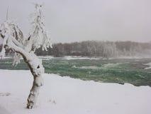 Den snabba iskalla floden i Niagara Falls parkerar arkivfoto