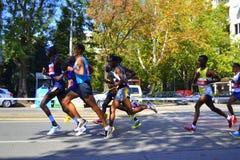 Den snabbaste maratonlöpareSofia boulevarden Arkivfoton